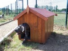 Vente privée - 60€ votre niche en bois Neils pour gros chien 1,17m2, très grande taille