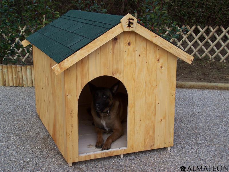 almateon pense vos animaux de compagnie blog almateon. Black Bedroom Furniture Sets. Home Design Ideas